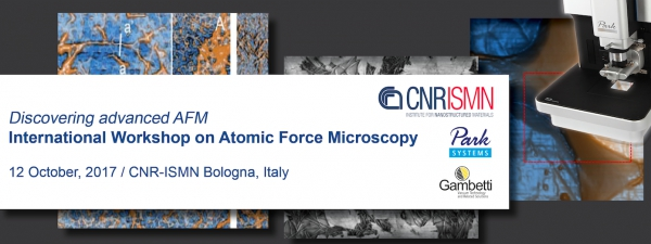 ADVANCED AFM: INTERNATIONAL WORKSHOP ON ATOMIC FORCE MICROSCOPY
